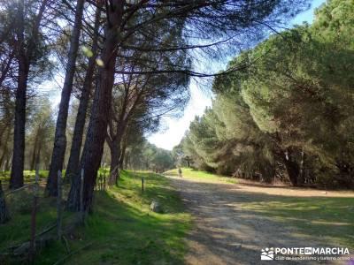 Cañón Río Aulencia-Embalse Valmenor; rutas por las merindades amigos de madrid serra do courel ri